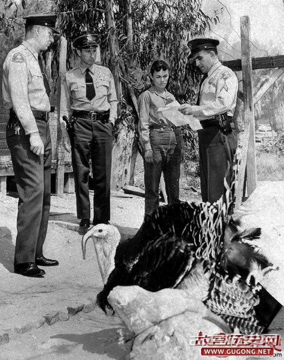 """美国的""""城管""""也很牛:洛杉矶人们被迫迁移"""