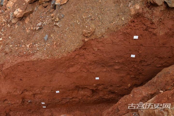 云南鹤庆蝙蝠洞遗址发掘收获